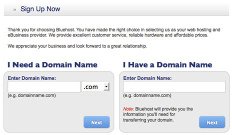 Signup: Domain Name
